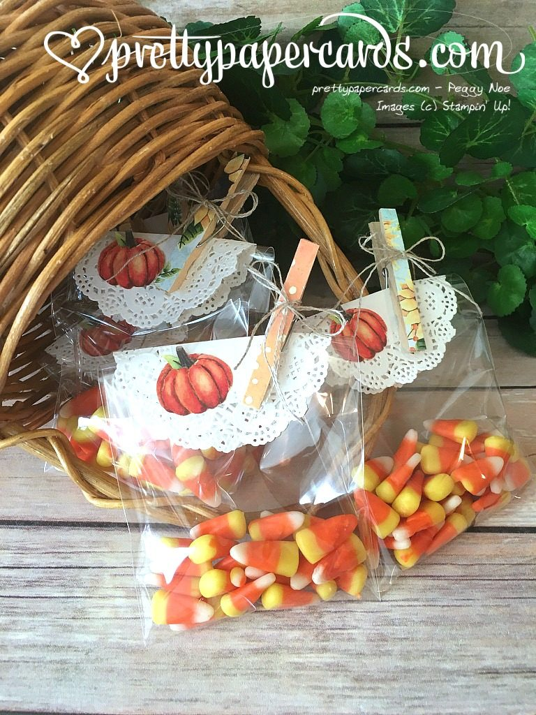 Stampin' Up! Painted Autumn Treat Bags - Peggy Noe - Painted Autumn