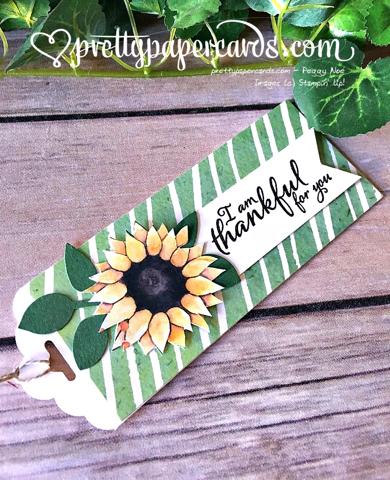 Stampin' Up! Painted Autumn paper Gift Tags - Peggy Noe - stampinup