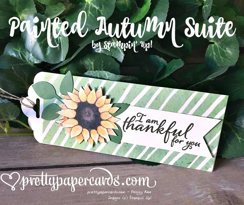 Stampin' Up! Painted Autumn paper Painted Harvest - Peggy Noe - stampinup