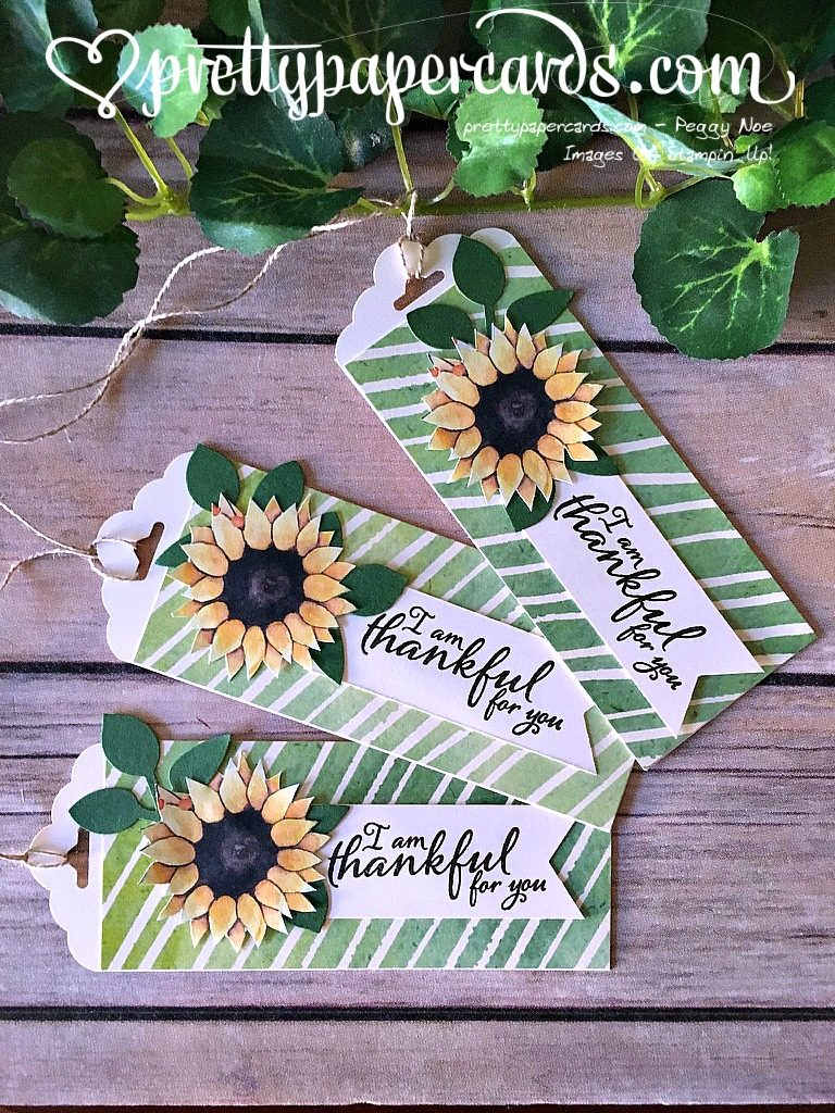 Stampin' Up! Painted Autumn tags Painted Harvest - Peggy Noe - stampinup