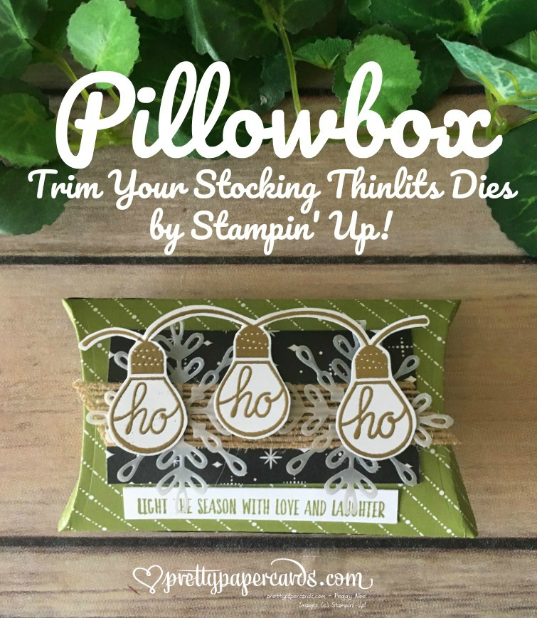 Stampin' Up! Pillowbox Prettypapercards - Peggy Noe - stampinup