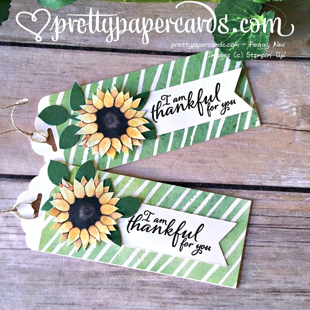 Stampin' Up! Thankful Gift Tags Painted Harvest - Peggy Noe - stampinup