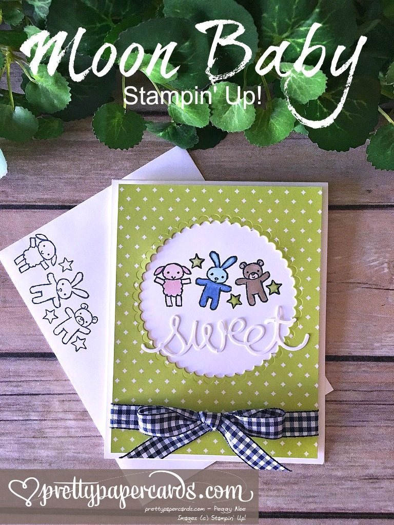 Prettypapercards Stampin' Up! Moon Baby Gingham - Peggy Noe - stampinup