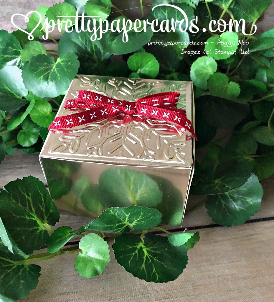 Stampin' Up! Holiday Box Champagne Foil - Peggy Noe - stampinup
