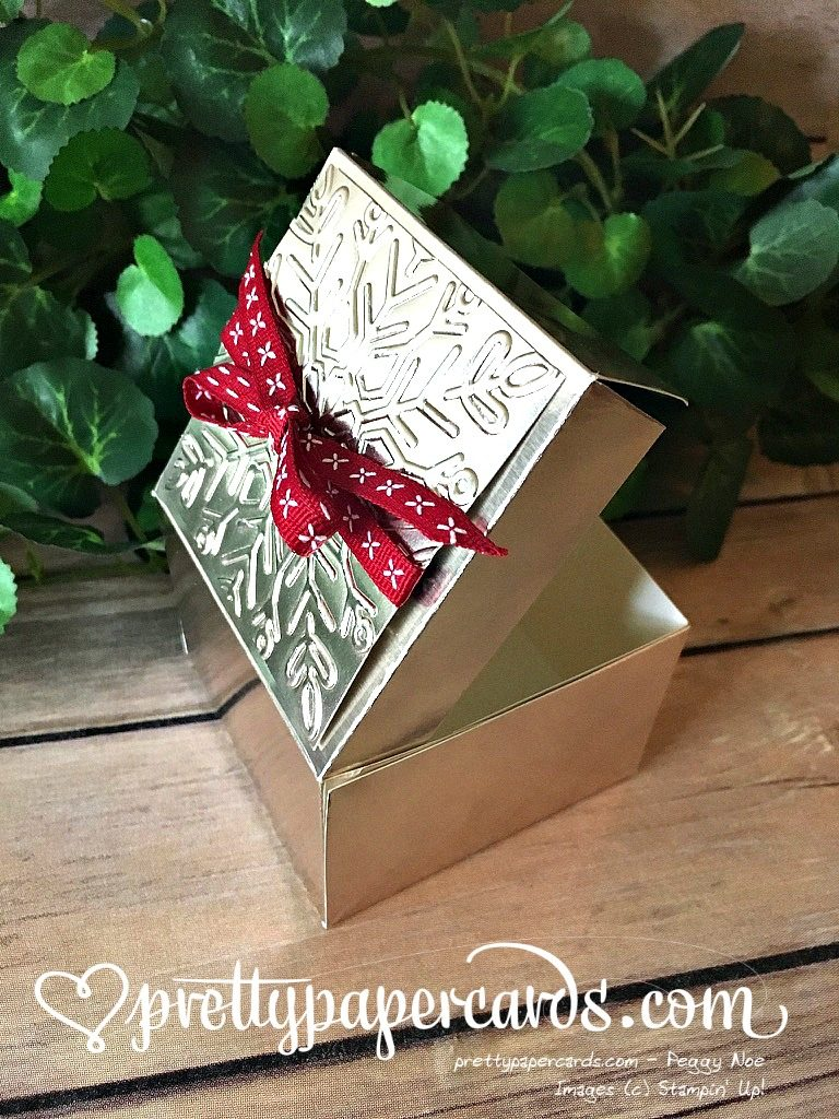 Stampin' Up! Holiday Gift Box Champagne Foil - Peggy Noe - stampinup