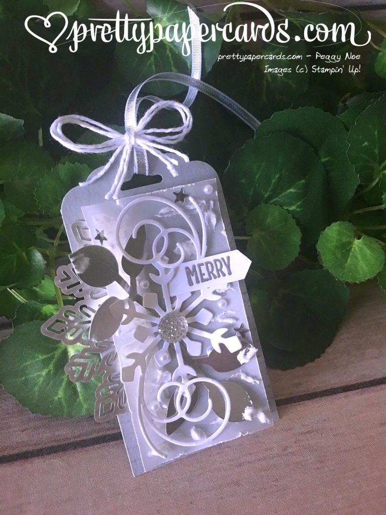 Stampin' Up! Vellum Gift Tag - Peggy Noe - stampinup