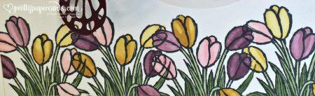 God Bless Tulips