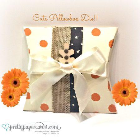 Pillowbox 1