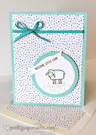 Lamb envie 2