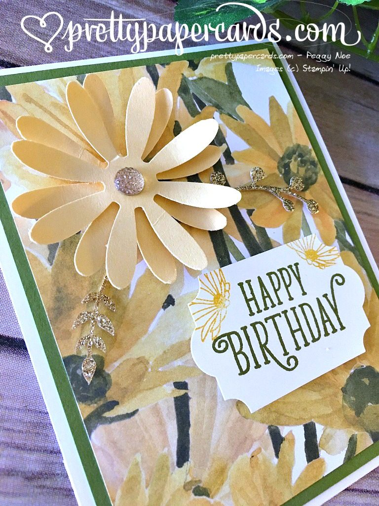 Stampin Up Daisy Delight Birthday Card - Peggy Noe Stampinup
