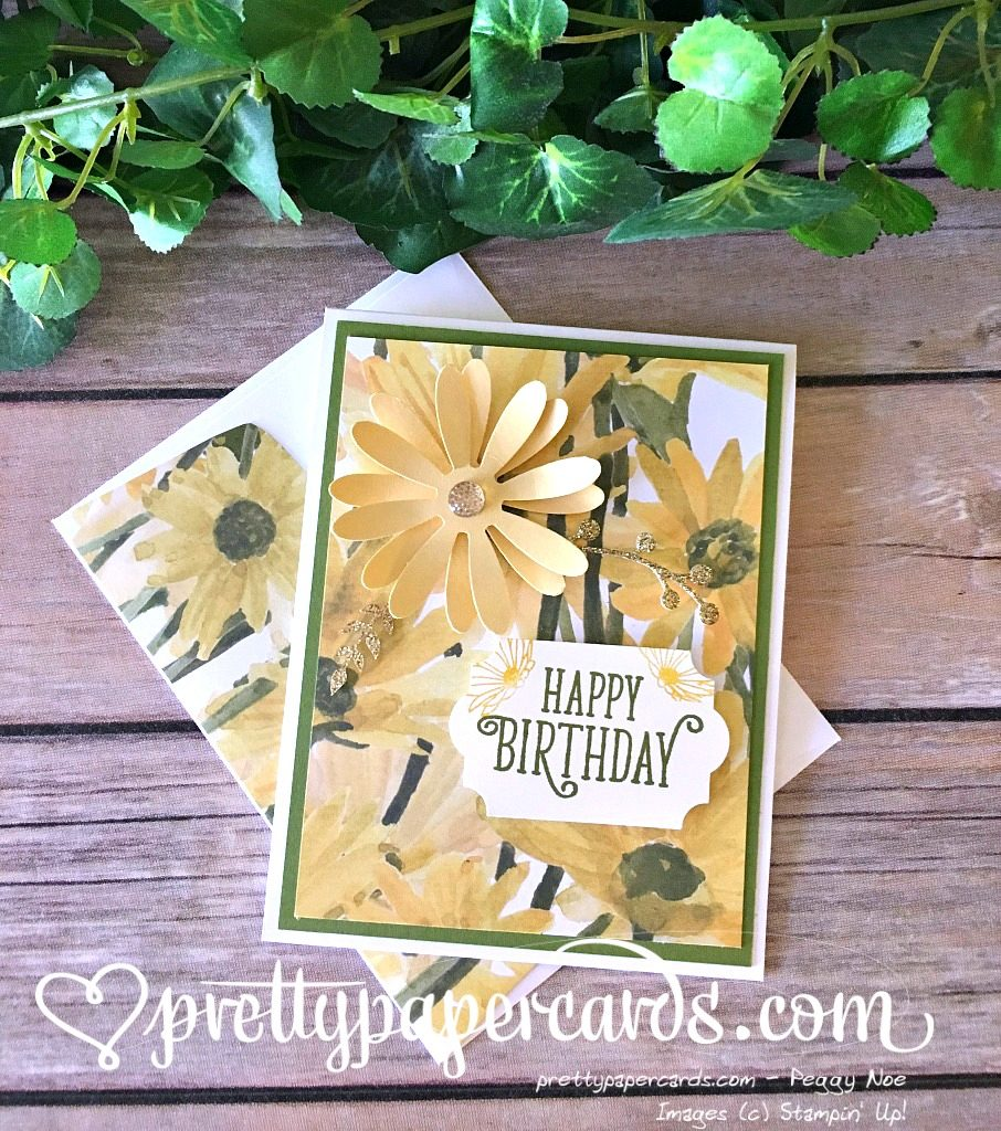 Stampin Up Daisy Delight Birthday Cards Idea - Peggy Noe Stampinup