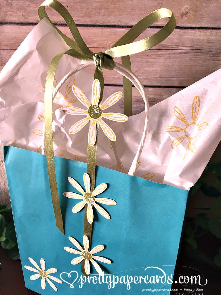 Stampinup Daisy Delight Gift Bag Daisy Punch - Peggy Noe Stampin Up