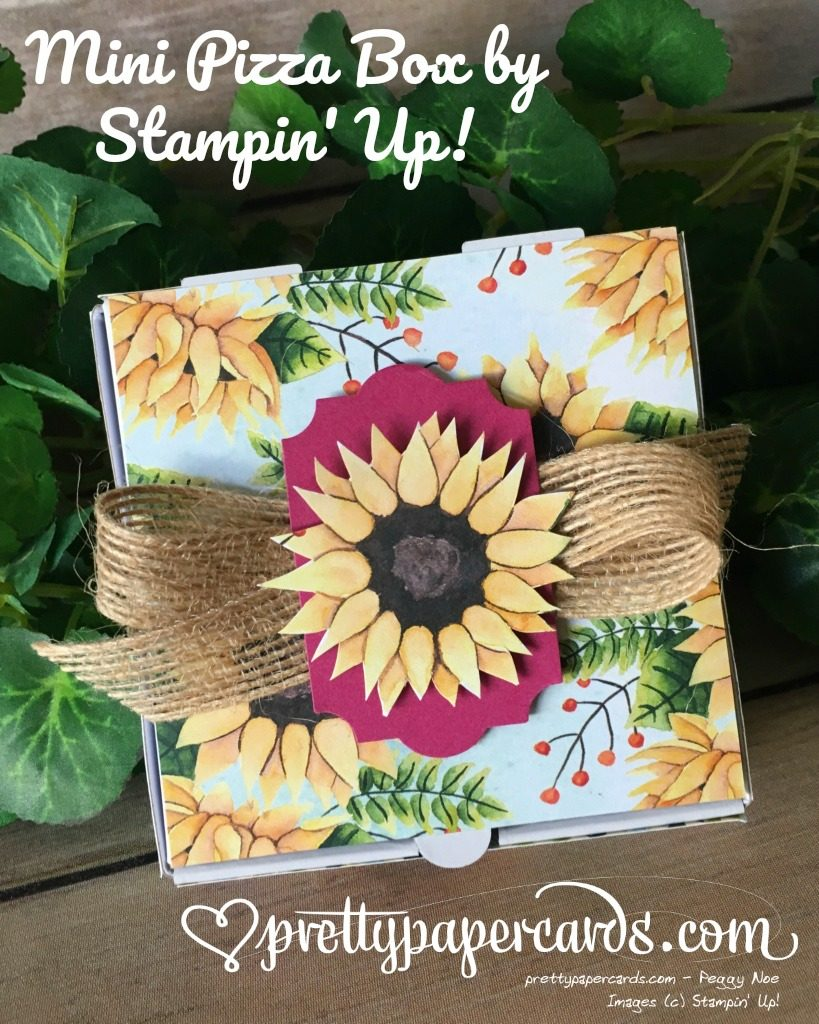 Stampin' Up! Mini Pizza Box - Peggy Noe - stampin up
