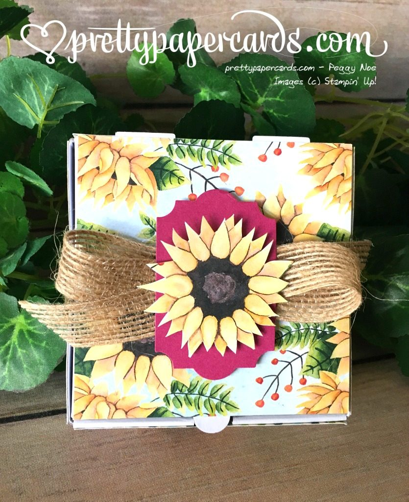 Stampin' Up! Painted Autumn Pizza Box - Peggy Noe - stampinup stampin up