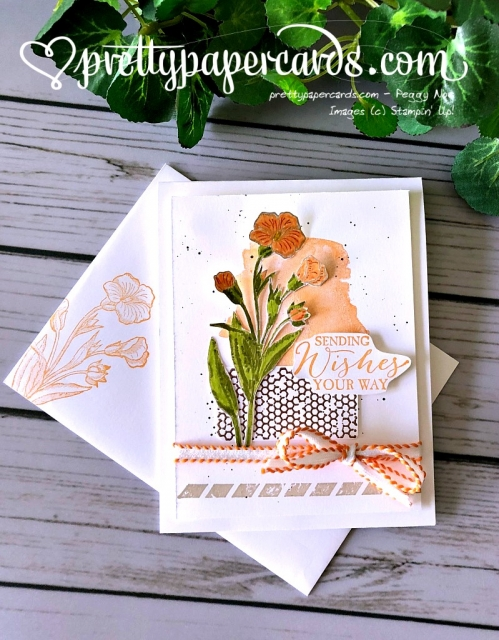 Stampin' Up! Beautiful Butterfly Basics - Prettypapercards - stampinup