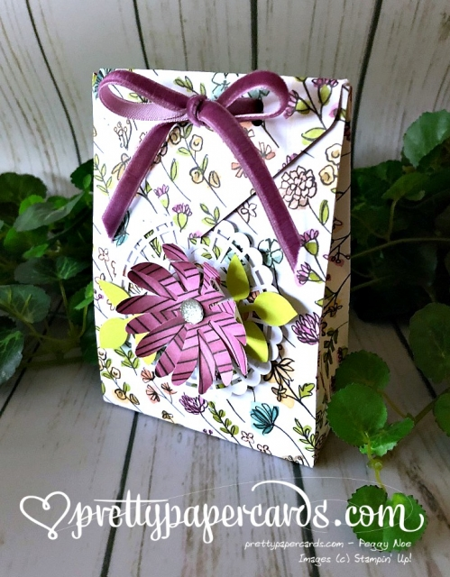 Stampin' Up! Gift Bag - Peggy Noe - stampinup