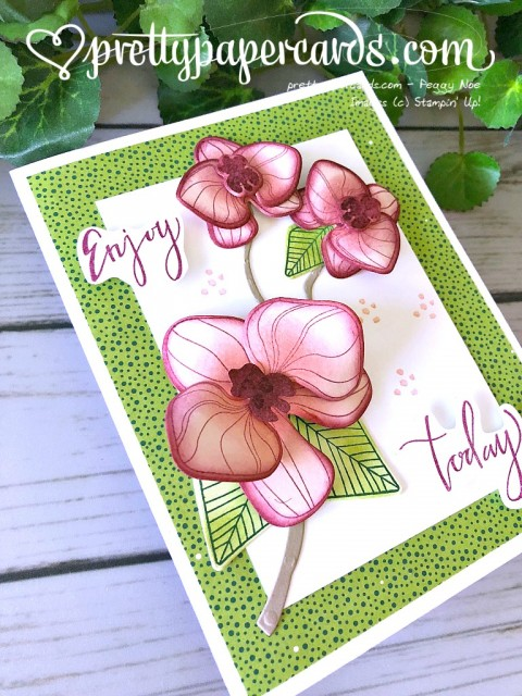 Stampin' Up! Climbing Orchid Builder - Peggy Noe - stampinup