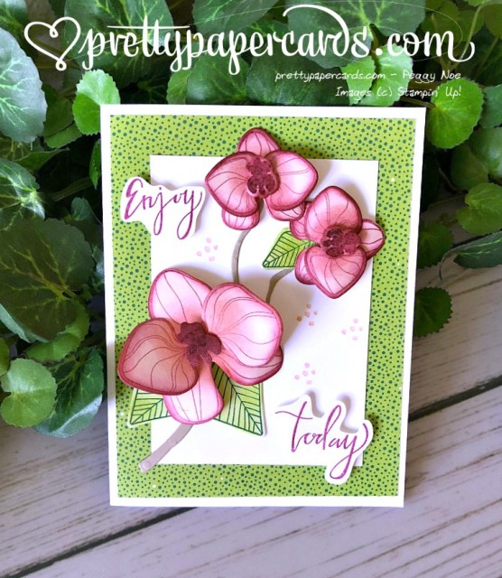 Stampin' Up! Climbing Orchid Builder - Pretty Paper Cards - stampinup