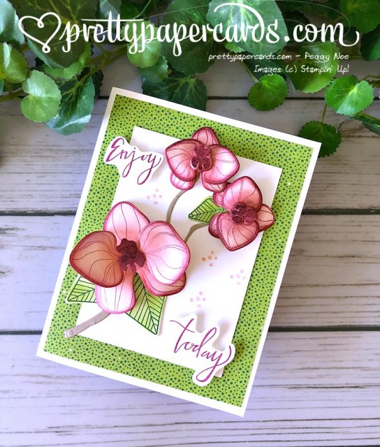 Stampin' Up! Climbing Orchid Card - Peggy Noe - stampinup