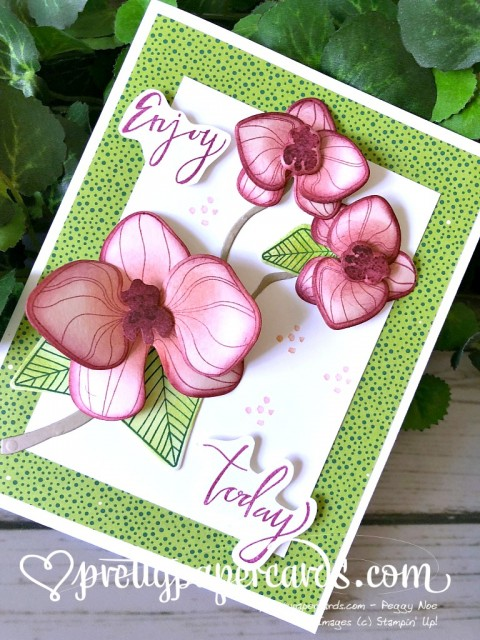 Stampin' Up! Climbing Orchid Enjoy Today - Peggy Noe - stampinup