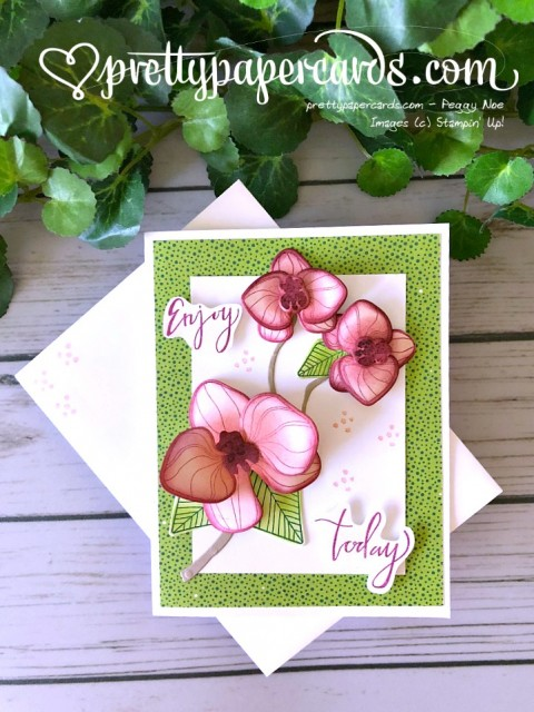 Stampin' Up! Climbing Orchid - Peggy Noe - stampinup