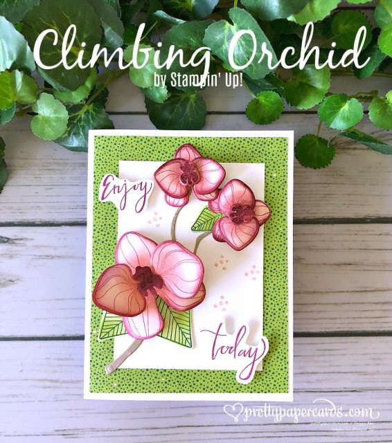 Stampin' Up! Climbing Orchid - Pretty Paper Cards - stampinup