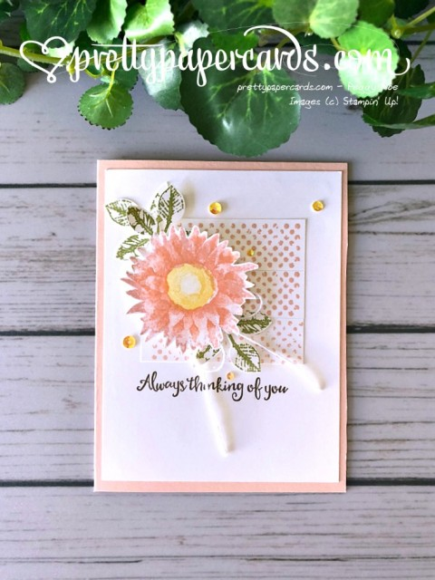 Stampin' Up! Painted Harvest Card - Peggy Noe - stampinup