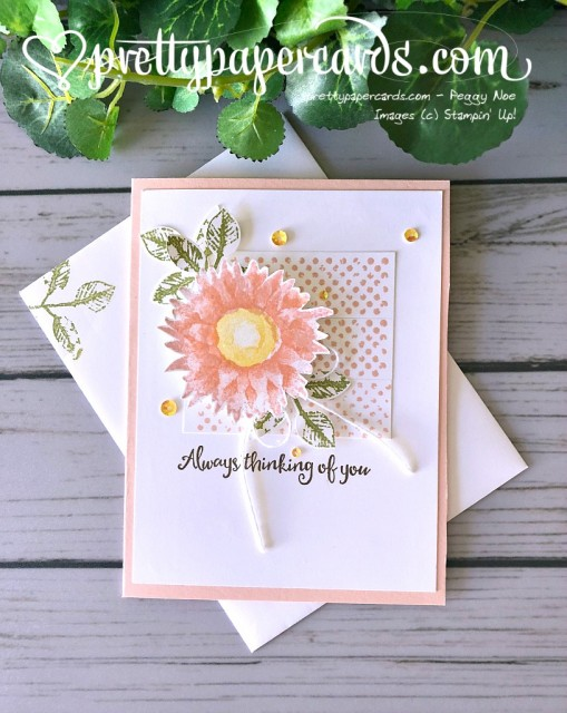 Stampin' Up! Painted Harvest - Pretty Paper Cards - stampinup