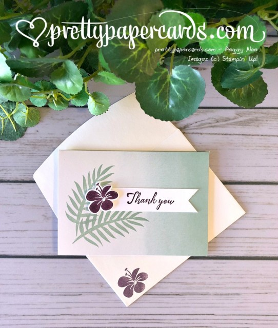 Stampin' Up! Tropical Chic Notecards - Peggy Noe - stampinup