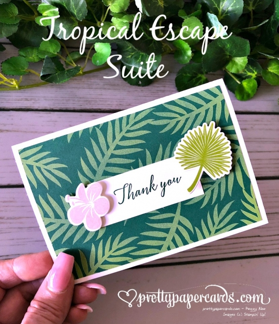 Stampin' Up! Tropical Chic - Peggy Noe - stampinup