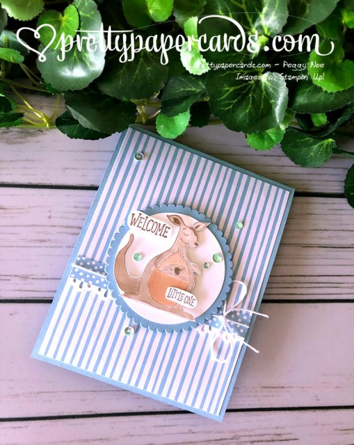 Stampin' Up! Baby Card - Peggy Noe - stampinup