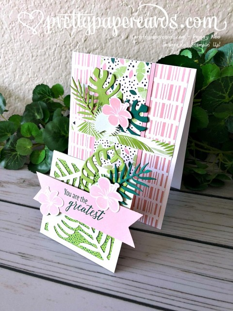 Stampin' Up! Tropical Chic Z fold - Peggy Noe - stampinup