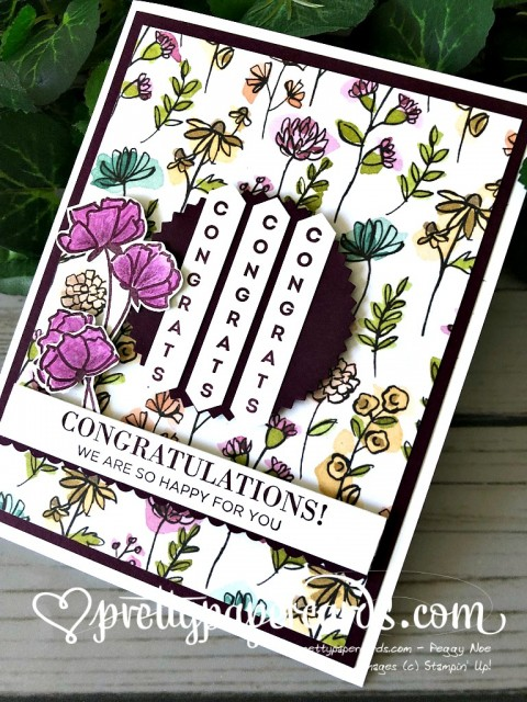 Stampin' Up! Another Wonderful Year - Peggy Noe - stampinup