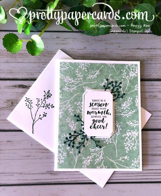 Stampin' Up! First Frost Holiday Card - Peggy Noe - stampinup
