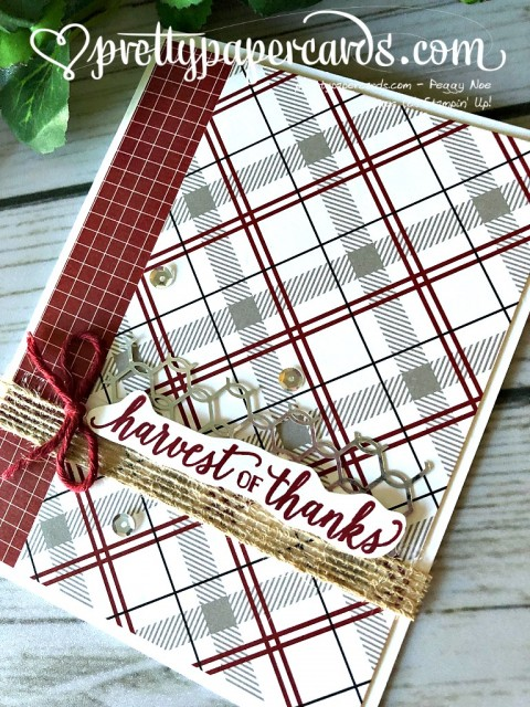 Stampin' Up! Harvest of Thanks - Peggy Noe - stampinup