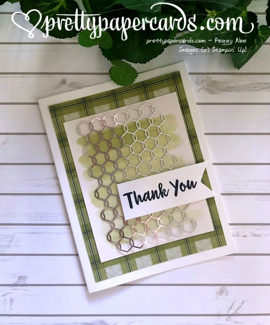Stampin' Up! Abstract Impressions Thank You - Peggy Noe - stampinup