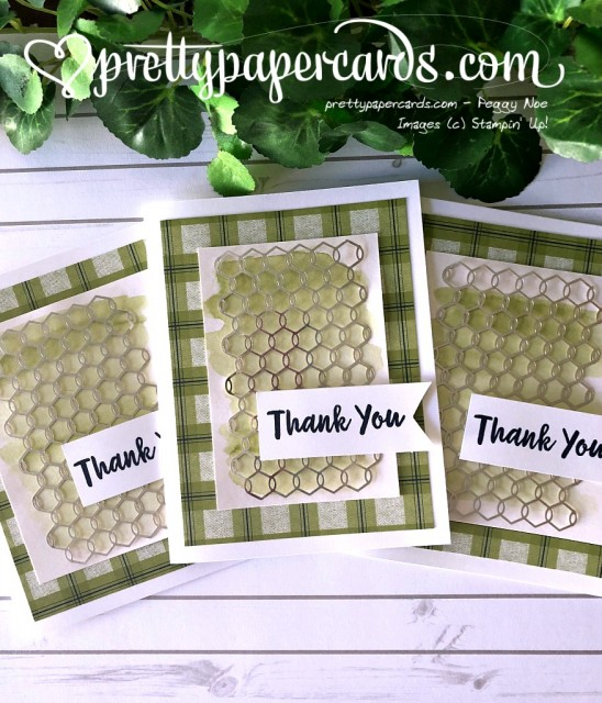Stampin' Up! Chicken wire Thank You - Peggy Noe - stampinup