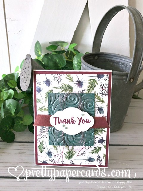 Stampin' Up! Winter Thank You - Peggy Noe - stampinup
