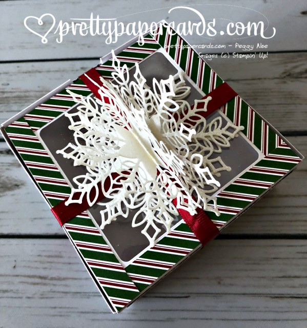 Stampin' Up! Snowfall Thinlits Gift - Peggy Noe - stampinup