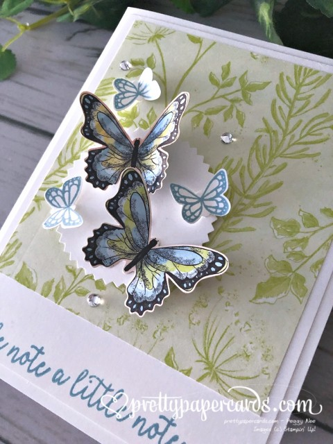 Stampin' Up! Butterfly Duet Card - Peggy Noe - stampinup