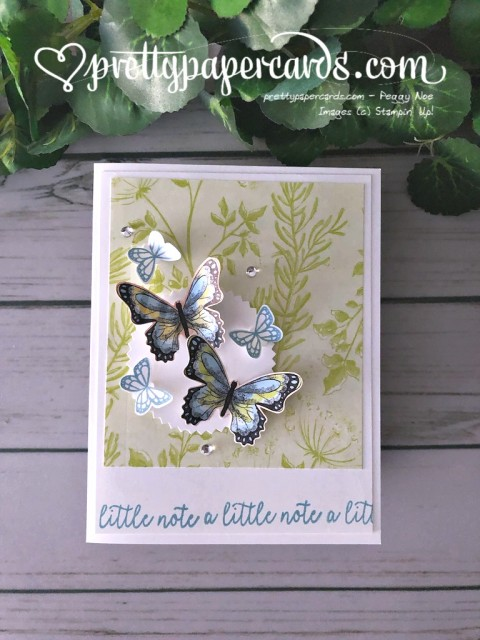Stampin' Up! Butterfly Duet Card - prettypapercards - stampinup