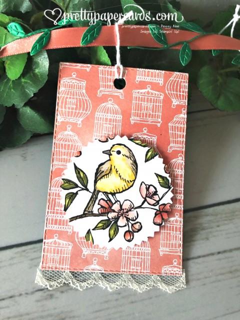 Stampin' Up! Bird Ballad Designer Series Paper - Peggy Noe - stampinup