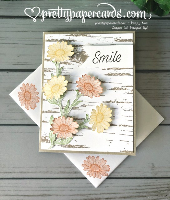 Stampin' Up! Daisy Lane - Peggy Noe - stampinup