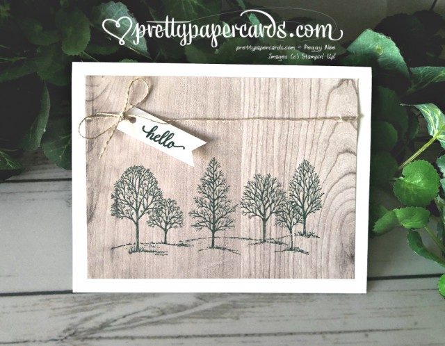 Stampin' Up! Lovely as a Tree Card - Peggy Noe - stampinup