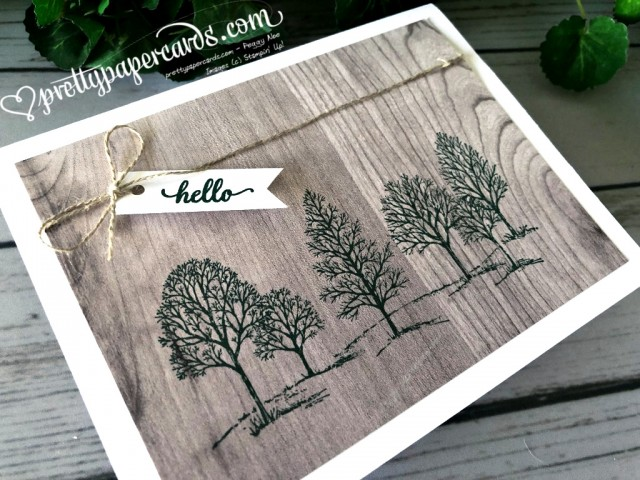 Stampin' Up! Lovely as a Tree - Peggy Noe - stampinup