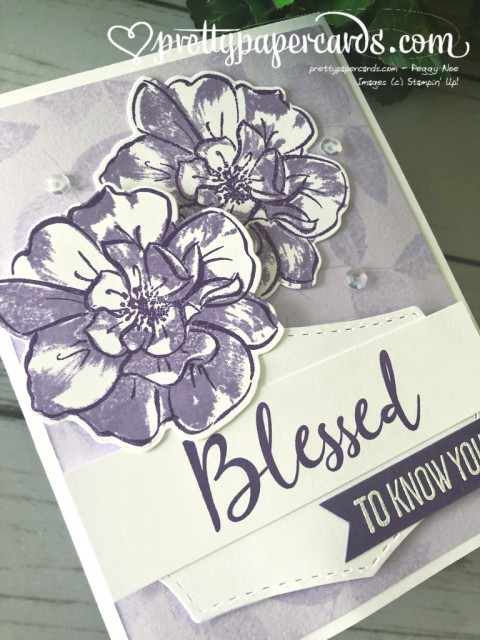 Stampin' Up! Wild Rose - prettypapercards - stampinup