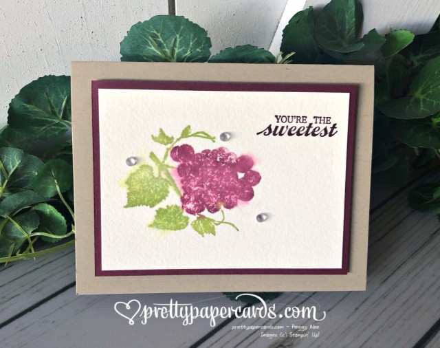 Stampin' Up! Slice of Happiness - Peggy Noe - stampinup