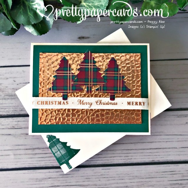 Stampin' Up! Plaid Christmas - Peggy Noe - stampinup