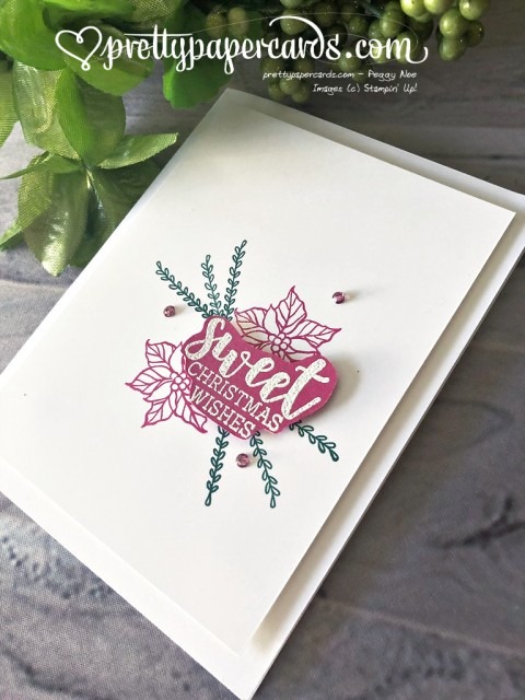 Stampin' Up! Simple Cup of Christmas - Peggy Noe - stampinup