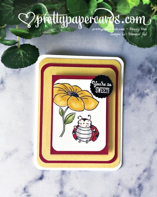 Little Ladybug Card Stampin' Up! by Peggy Noe (1)